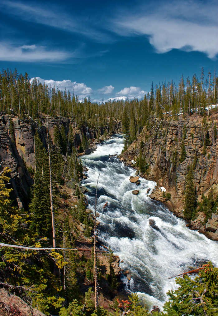 Lewis River, Yellowstone National Park in Wyoming.