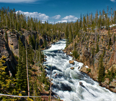 Yellowstone National Park Canyon Photo of Lewis River