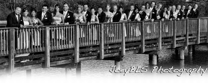 Best Wedding Photo Locations in Northwest Indiana