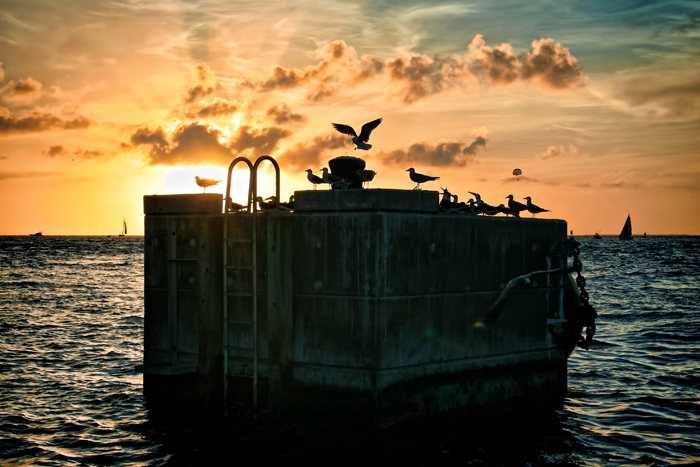 The sunset at Mallory Square in Key West, Florida