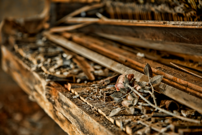 Rotten, decaying piano abandoned Church Gary Indiana