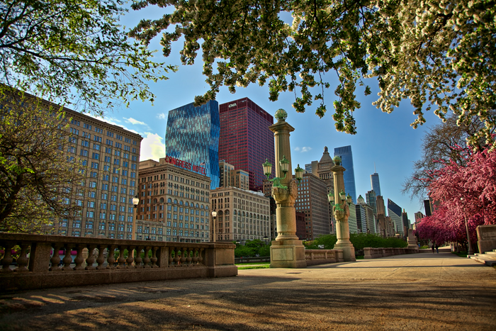 A spring evening in downtown Chicago.