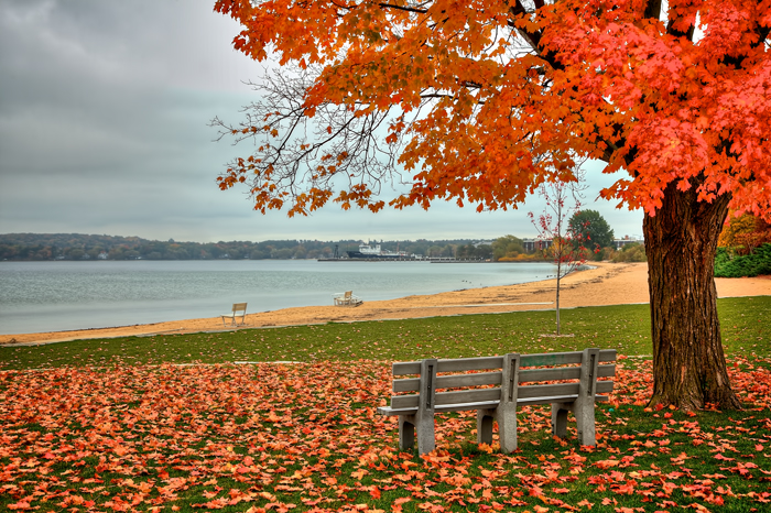 The last days of fall in Traverse City, Michigan